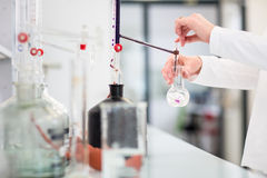 Lab worker`s hands while at work at a research center in a lab, Royalty Free Stock Images