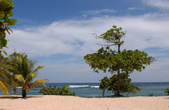 Labadee Hatiti Вест-Индия Стоковые Изображения