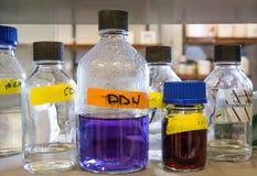 Labb för biologikemiforskning Royaltyfri Fotografi