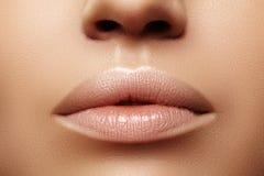 Labbra grassottelle del primo piano Cura del labbro, aumento, riempitori Macro foto con il dettaglio del fronte Forma naturale co fotografie stock