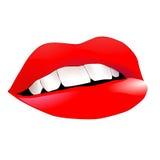 Labbra rosse luminose Fotografia Stock