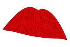 Labbra rosse nel fondo bianco Fotografia Stock Libera da Diritti