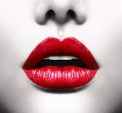 Labbra sexy Fotografie Stock