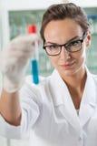 Labbtekniker som analyserar resultat av experimentet Arkivbild