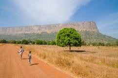 Labe, Гвинея - 20-ое декабря 2013: 2 неопознанных мальчика идя на грязную улицу смотря назад с деревом и горой стоковые фотографии rf