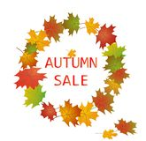 Label for autumnal sale Stock Photography