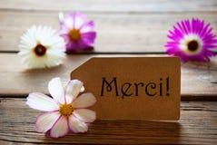 Label avec le texte français Merci avec des fleurs de Cosmea photo stock