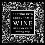 Label for a bottle of wine Royalty Free Stock Image
