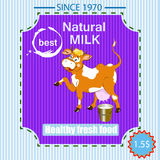 Label dairy products Royalty Free Stock Photos