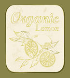 Label de citron Photo stock