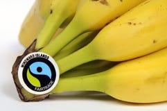 Label de Fairtrade sur un groupe de bananes mûres Photos libres de droits