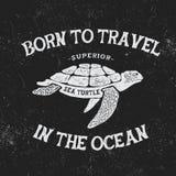 Label de vintage avec la tortue Photos libres de droits