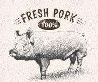 Label de vintage avec le porc Images stock