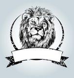 Label de vintage de vecteur avec la tête de lion Photographie stock