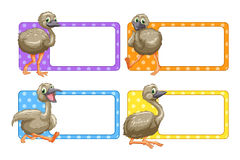 Label design with baby ostriches Stock Photo