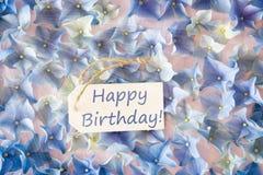 Sunny Hydrangea Flat Lay, Text Happy Birthday Stock Photos