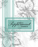 Label for essential oil of peppermint. With hand drawn leaves Royalty Free Stock Photos