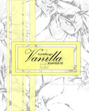 Label for essential oil of vanilla Royalty Free Stock Image
