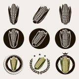 Label et icônes de maïs réglés Vecteur illustration libre de droits