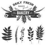 Label floral de logo de vecteur avec la texture et les branches et les feuilles florales distinctes illustration libre de droits