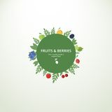 Label with fresh fruits and berries. Vector circle label or banner with fresh fruits and berries. Concept organic product royalty free illustration