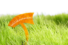 Label With German Willkommen Which Means Welcome On Green Grass Royalty Free Stock Images