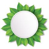 Label with green leaves Stock Photos