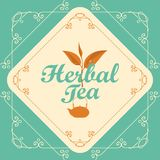 Label for herbal tea with sprig of tea and teapot. Vector label for herbal tea decorated with a sprig of tea and teapot in curly frame with swirls on turquoise Royalty Free Stock Photo