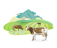 Label illustration with happy cows graze on alpine meadows, on mountain landscape background. Vector sticker illustration. Rural pasture landscape with happy vector illustration