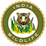 Label of India wildlife centuries Royalty Free Stock Photography