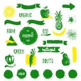 Label, insigne ou joint frais d'aliment biologique dessiné par Han de ferme Photos libres de droits