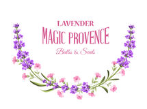 Label with lavender. Bunch of lavender flowers on a white background. Botanical illustration. Vintage style. Making gifts of paper and textiles. Vector Stock Images