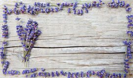 Label for lavender products Stock Photo