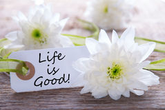Label with Life is Good. Label with the Text Life is Good an Wood with White Blossoms Stock Images