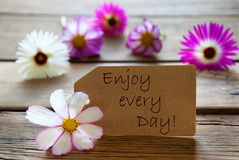 Label With Life Quote Enjoy Every Day With Cosmea Blossoms. Brown Label With Life Quote Enjoy Every Day With Purple And White Cosmea Blossoms On Wooden Stock Photos