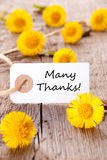 Label with Many Thanks. And Yellow Flowers Royalty Free Stock Image