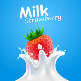 Label milk strawberry. vector illustration Royalty Free Stock Images