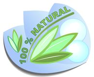 Label 100 % natural for healthy natural product. S with leafs and bubbles Royalty Free Illustration