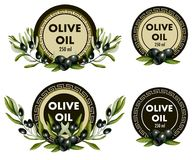 Label for olive oil with realistic olives and Greek meander pattern. Vector illustration. Label for olive oil with realistic olives and Greek meander pattern Stock Image