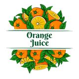 Label for orange juice with oranges. Vector illustration of two groups of fresh ripe oranges and green leaves on a white background Stock Photography