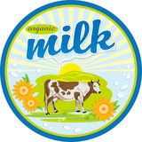 Label organic milk. Vector label on a bottle of organic milk with the cow and milk splashes Royalty Free Stock Photos
