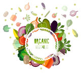 Label organic vegetables on a white background Royalty Free Stock Image