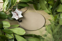 Label oval frame branches and white star Stock Photography