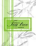 Label pour l'huile essentielle de l'arbre de thé image stock