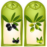 Label for product. Olive oil. stock illustration