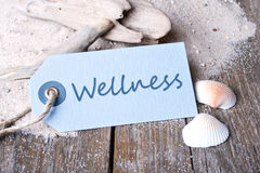 Wellness. Label, sand and shells with lettering wellness Royalty Free Stock Photos