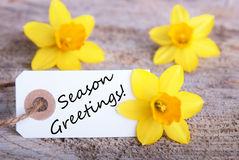 Label with Season Greetings Royalty Free Stock Photos