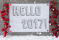 Label, Snowflakes, Christmas Decoration, Text Hello 2017 Stock Photos
