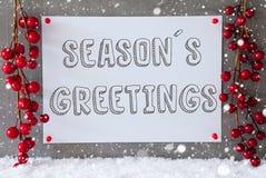 Label, Snowflakes, Christmas Decoration, Text Seasons Greetings royalty free stock image
