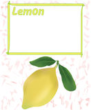 Label,sticker,tag design with lemon and frame for price Stock Photos